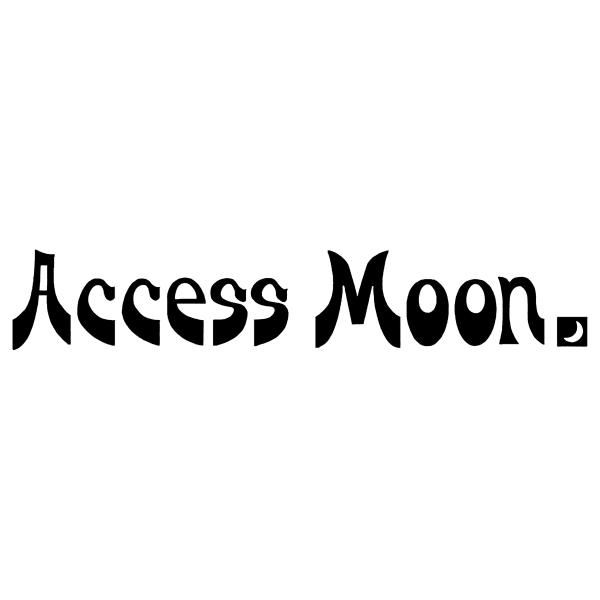 Access Moon 自治医大店