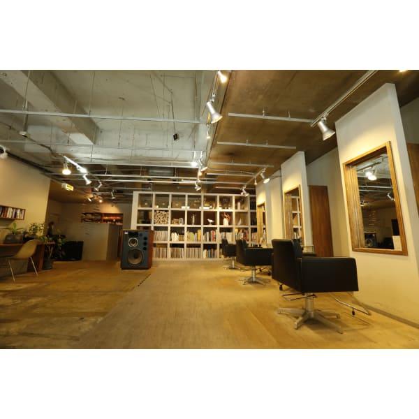 navarro studio