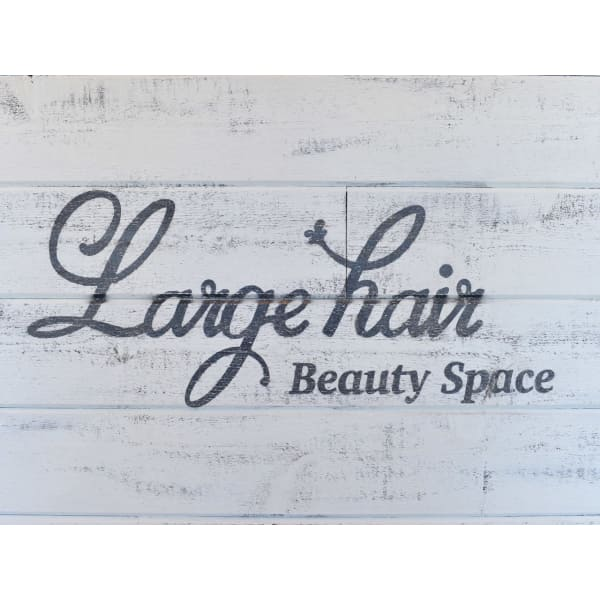 Beauty Space Large hair