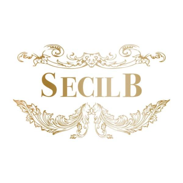 SECILB武蔵小杉