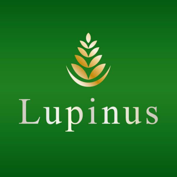 Lupinus 二俣川