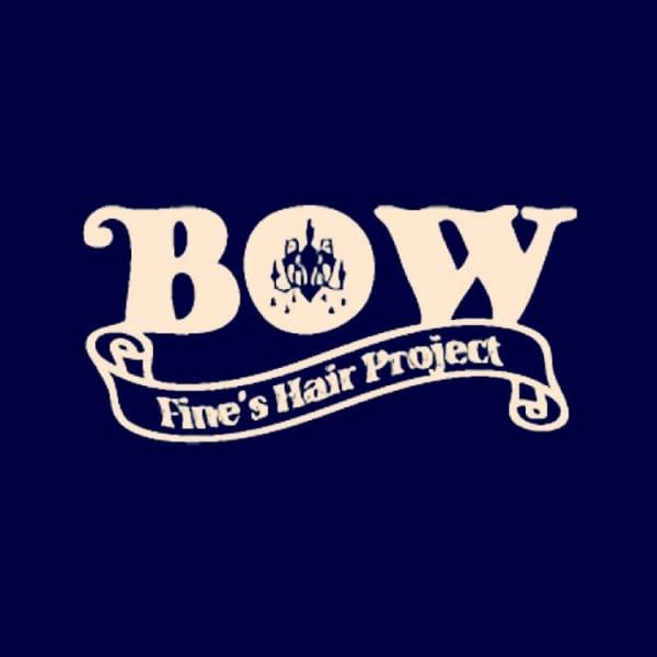 Fine's Hair BOW