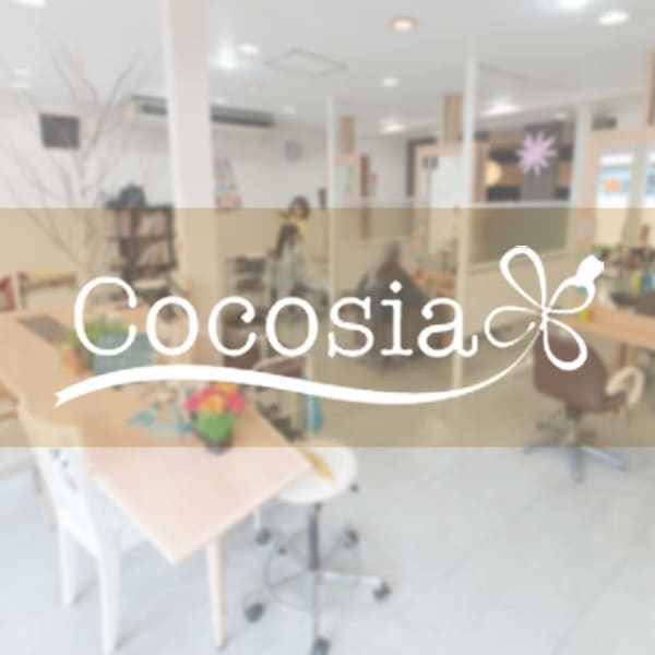 Cocosia 亀有