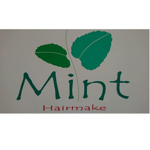 Hairmake Mint