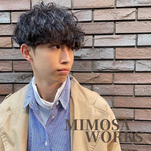 Hair Salon Mimosa Works