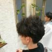 ねむれる森(ネムレルモリ)/富雄