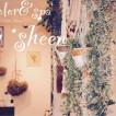 ヘアカラー専門店&ヘッドスパ専門店 by sheen(カラーセンモンテンアンドヘッドスパセンモンテン バイ シーン)/武蔵小杉