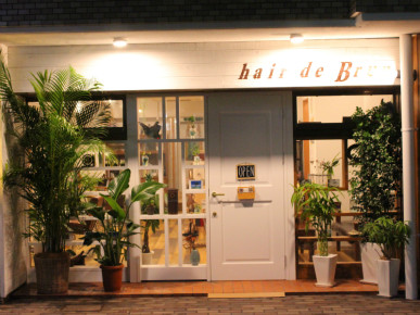hair de Brun