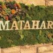 MATAHARI(マタハリ)