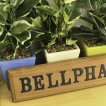 Bellpha(ベルファ)