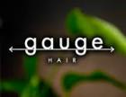 gauge HAIR