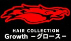 HAIR COLLECTION Growth
