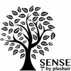 SENSE by plus hair