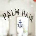 PALM HAIR