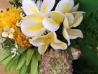ハワイアンリラクゼーション Pua Lani