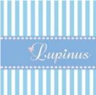 プライベートサロン Lupinus