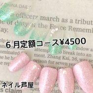定額コース¥4500