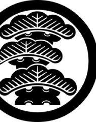 松井 健太