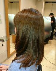 HAIR GUEST