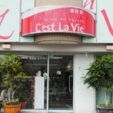 美容室セラヴィ 北佐古店(セラヴィ)