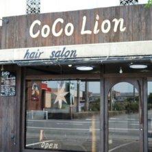 CoCo Lion(ココ ライオン)