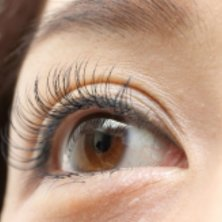 eyelash salon Embellir(アイラッシュサロンアンベリール)
