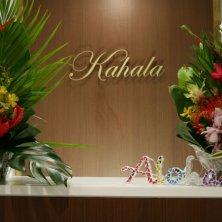 Eyelash Resort Kahala 四ツ谷三丁目店(アイラッシュリゾートカハラヨツヤサンチョウメテン)