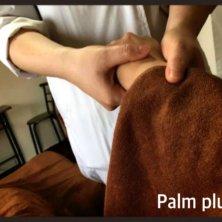 Palm pluss(パームプラス)