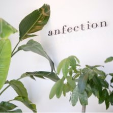 anfection(アンフェクション)