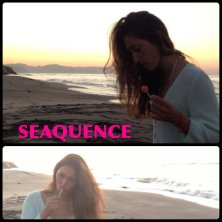 SeaQuence(シークエンス)