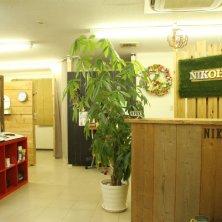 NIKOHORI(ニコホリ)