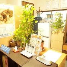 三上カイロプラクティック平塚整体院(ミカミカイロプラクティックヒラツカセイタイイン)