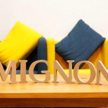 Mignon(ミニョン)
