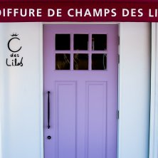 Champs des Lilas(シャンデリラ)