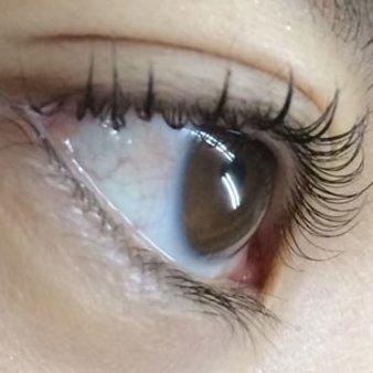 eyelash salon affectueux(アフェクテュウ)