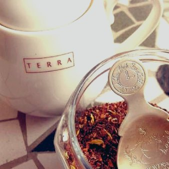 TERRA(テラ)
