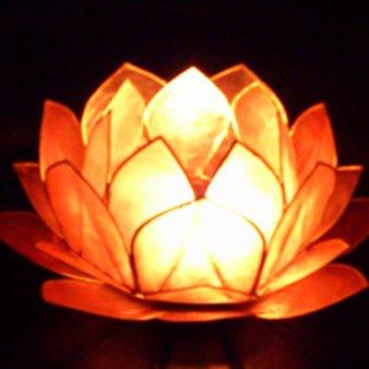 Total Relaxation Lotus(トータルリラクゼーションロータス)