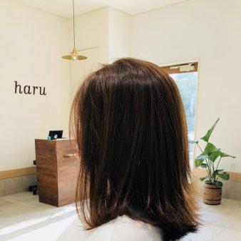 haru(ハル)
