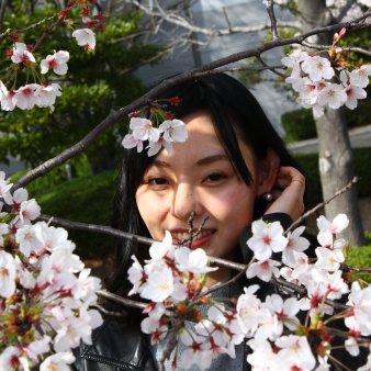 sakura kawaii(サクラカワイイ)