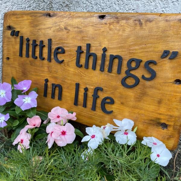 ''little things'' in life(リトルシングス イン ライフ)