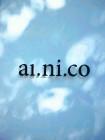 al.ni.co