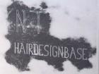 NT hairdesignbase